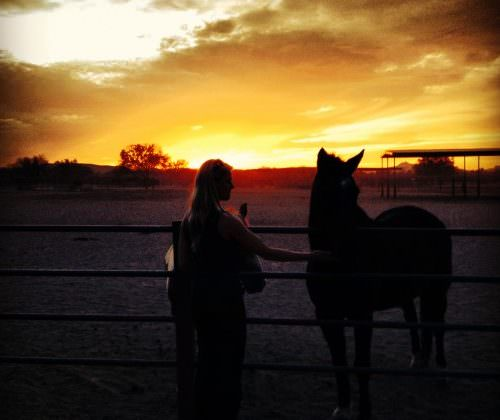Linda. Horse and girl silhouette at sunset