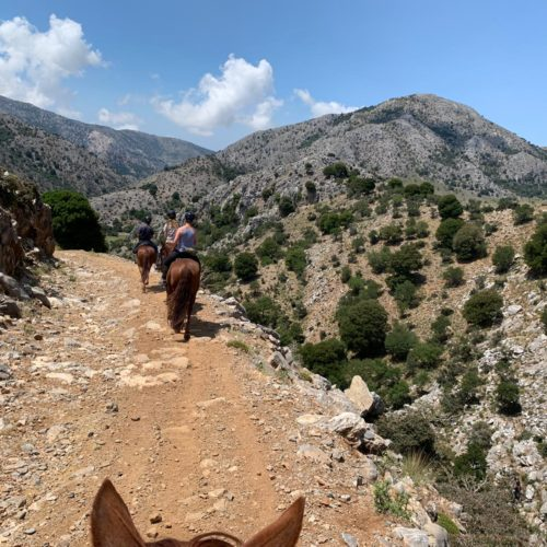 Horse riding in Crete, Lassithi Trek