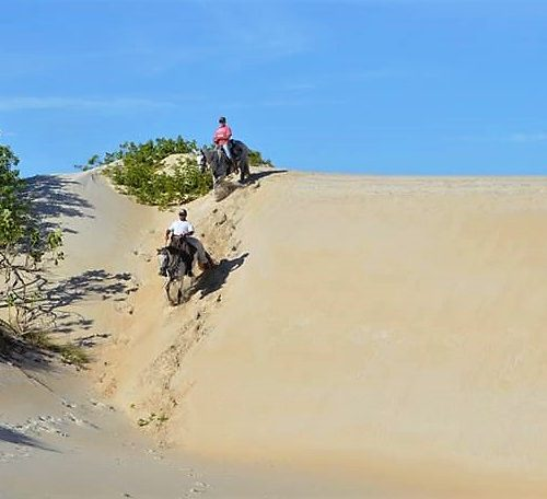 Trail riding holidays in Brazil. Horses in the sand dunes.