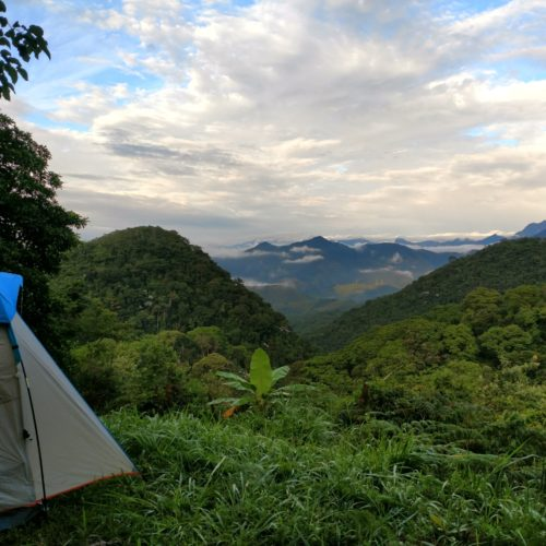 Trail riding holidays in Brazil. Camping in the rainforest.