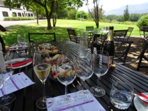 Riding Cape Winelands, Fine dining and glorious riding at the Cape Winelands, In The Saddle, In The Saddle