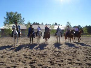 There are a range of horses available on the ranch such as quarter horses, paint horses and local breeds.