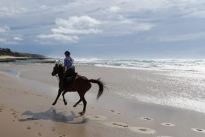 Wild Coast, An unforgettable adventure on the Wild Coast, In The Saddle
