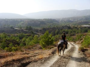 Riding Holidays in Rhodes, Five reasons why you should go to Rhodes., In The Saddle
