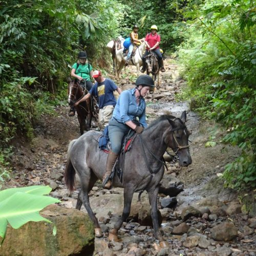 Wilderness ride in Costa Rica. Riding Holidays with In The Saddle. Horses.