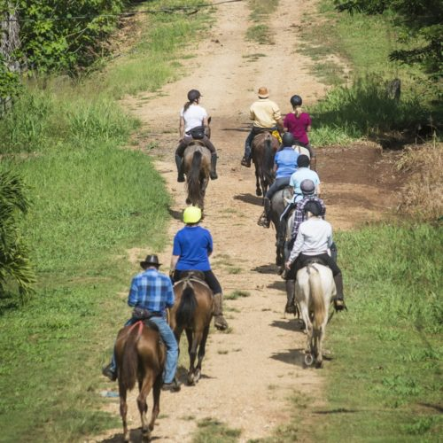 Wilderness ride in Costa Rica. Riding Holidays with In The Saddle. Horses in rainforest.