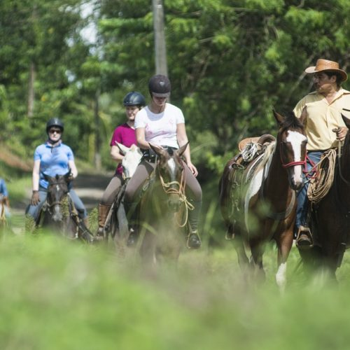 Wilderness ride in Costa Rica. Riding Holidays with In The Saddle. Group of horses.