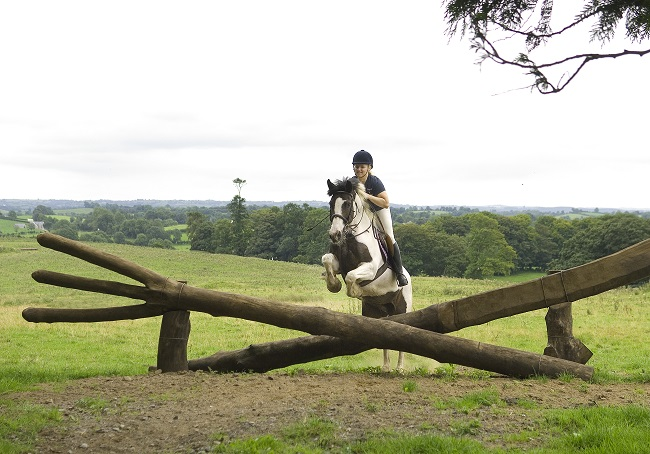 Ireland, castle leslie, cross country jumping, horses