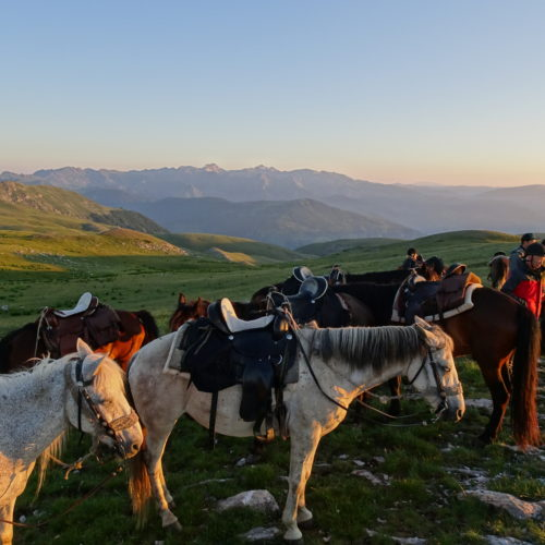 Macedonia riding holidays - horses at sunset