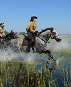 riding safari macatoo, The Magic of the Okavango Delta…., In The Saddle, In The Saddle