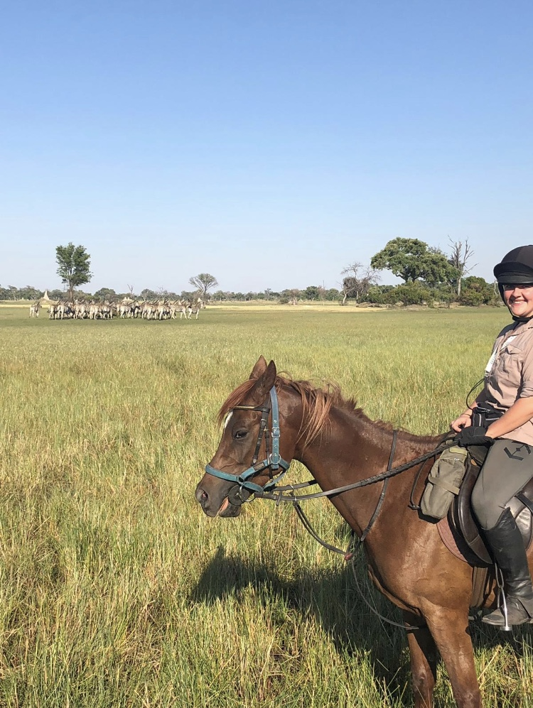 In The Saddle Riding Safari, Botswana. Game viewing on horses
