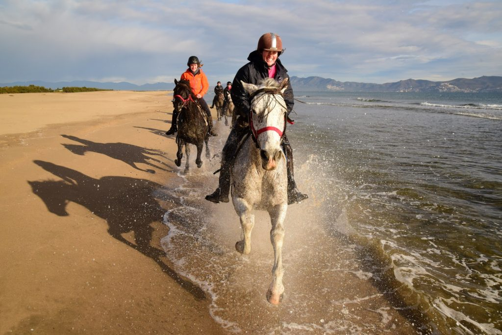 Solo Traveller, Top Five Reasons to Book a Riding Holiday as a Solo Traveller., In The Saddle