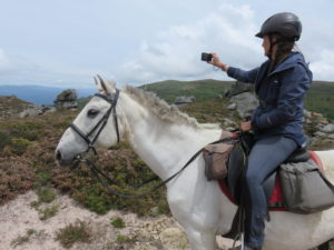 Wild Horses, Wolf prints, plenty of wild horses and the perfect combination of wilderness, relaxation and riding in Portugal, In The Saddle, In The Saddle