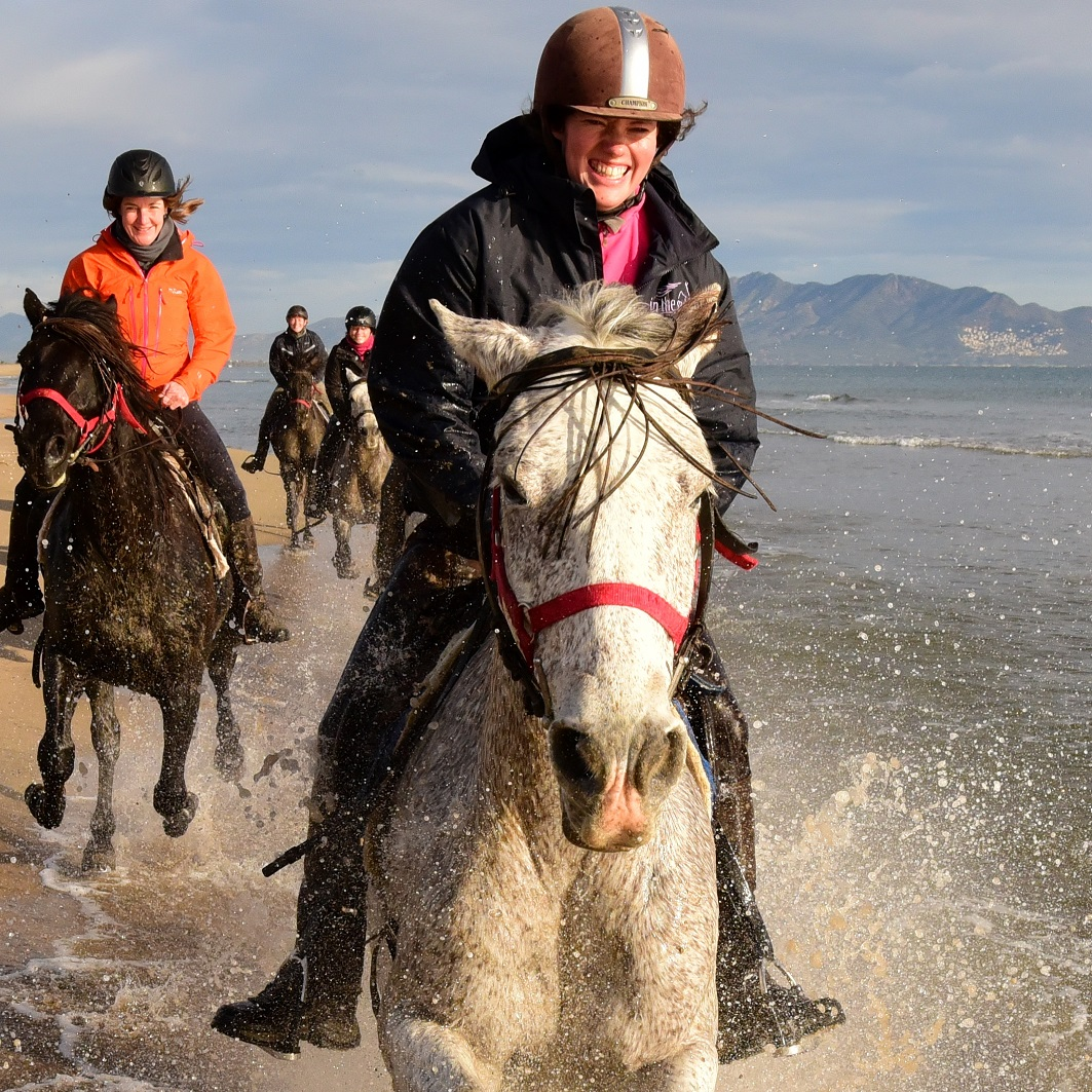 Travel consultant at In The Saddle. Riding Holidays.
