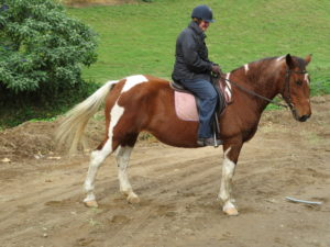 azores, The Allure of the Azores, In The Saddle, In The Saddle