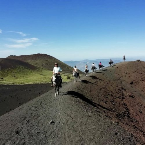 Horses and riding near Mount Etna - Sicily. Holidays in Italy.