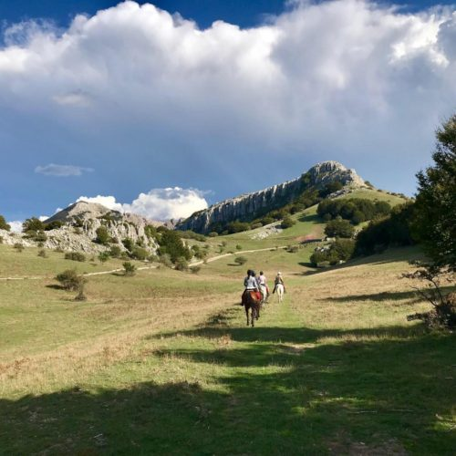 horses and riding near Mount Etna - Sicily. Holidays in Italy. Fast riding