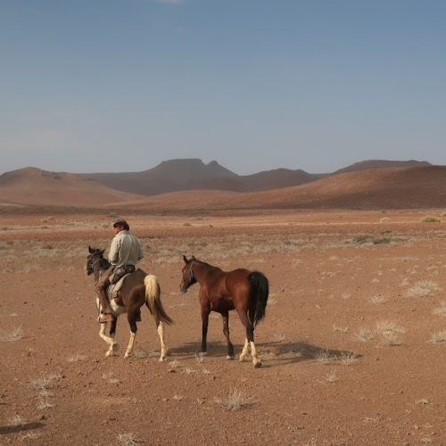 In The Saddle. Namibia - Skeleton Damara Ride. Horse and rider in the desert.