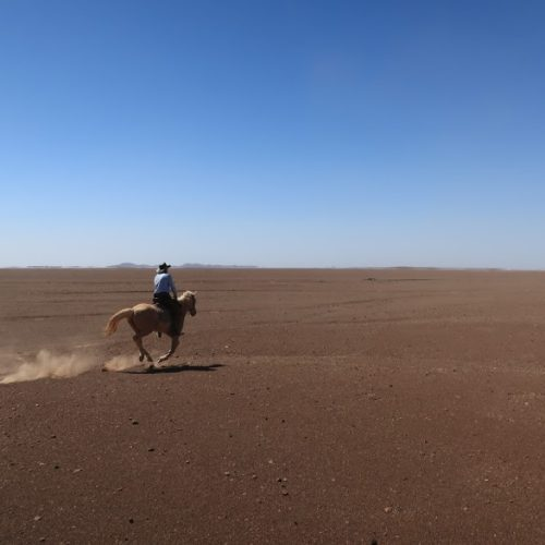 In The Saddle. Namibia - Skeleton Damara Ride. Horse and rider cantering in the desert.