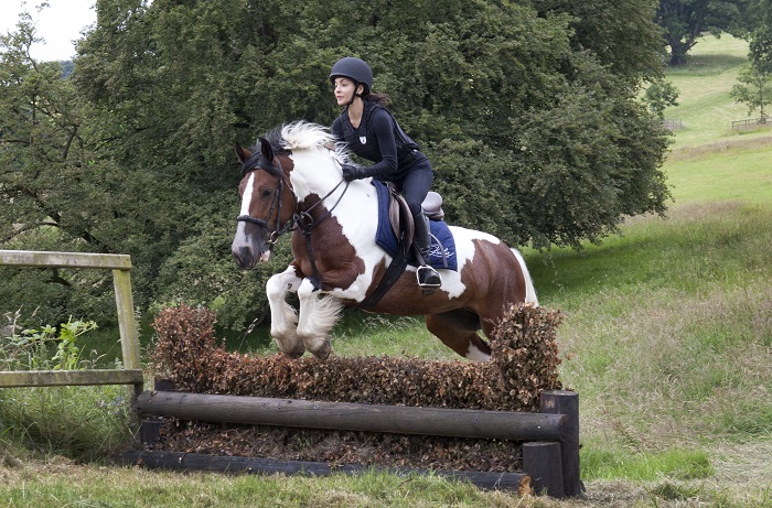 riding experience - horse jumping