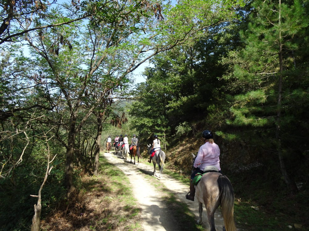 , Exploring Sicily, In The Saddle