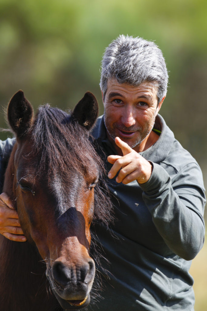 , Breeds from Around the World: Part Two – Garrano, In The Saddle