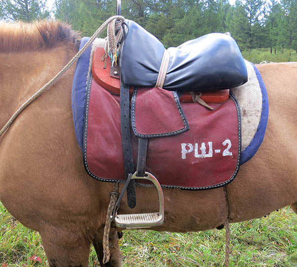 , Stirrups – Part Two: Designs from around the World, In The Saddle
