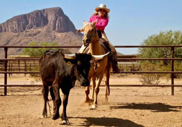 , May 2021 – Living the Western dream, In The Saddle
