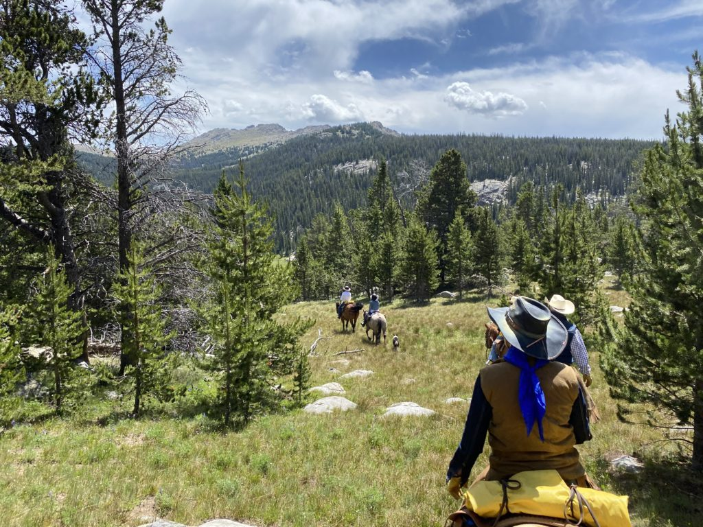 , July 2021 – The Hideout's Mustangs, In The Saddle
